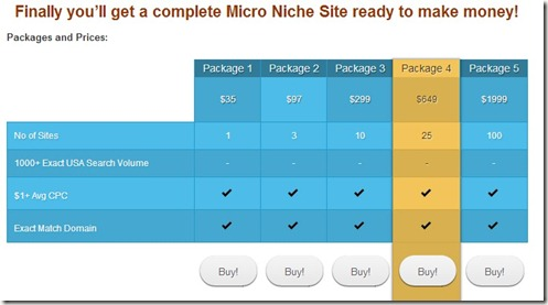 Making money with Micro Niche Websites