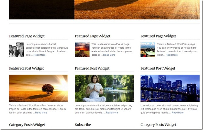 alternate responsive solostream new wordpress theme